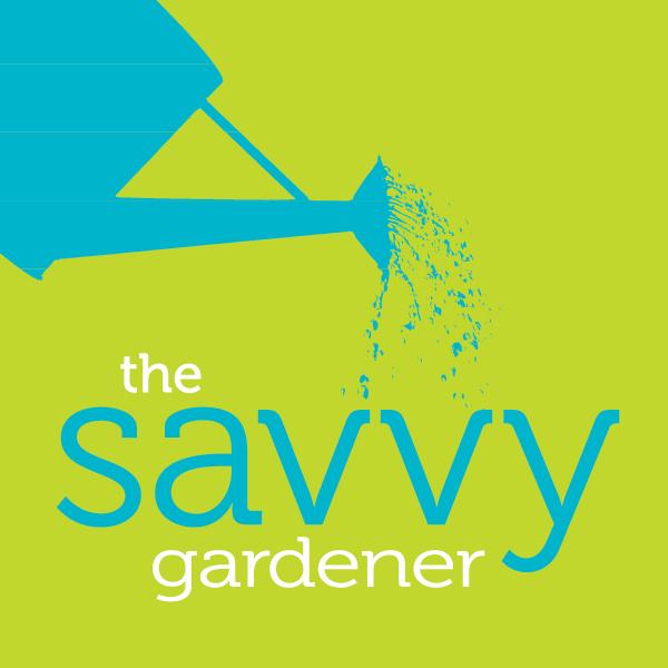 2x2 savvy gardener logo