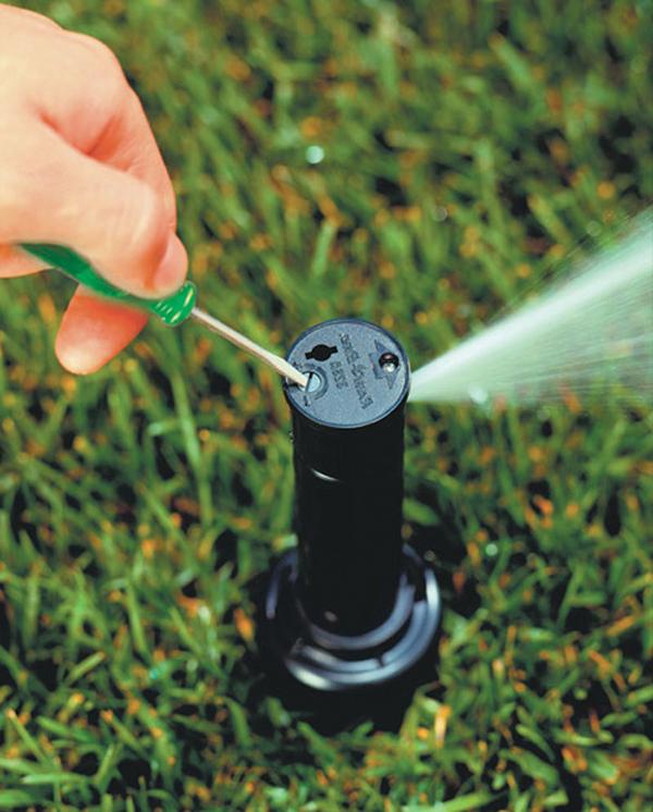 fix irrigation system adjust shoreline lake forest park