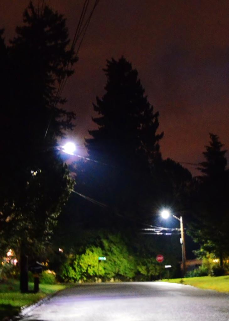 Streetlight_0031