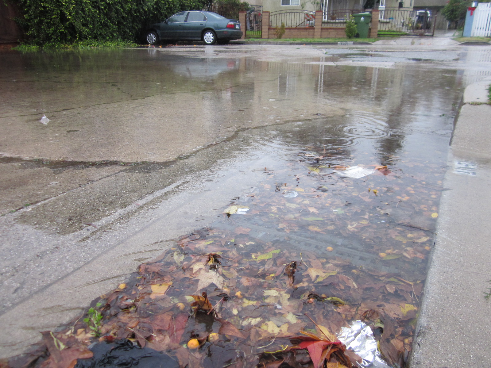 Flooded storm drain