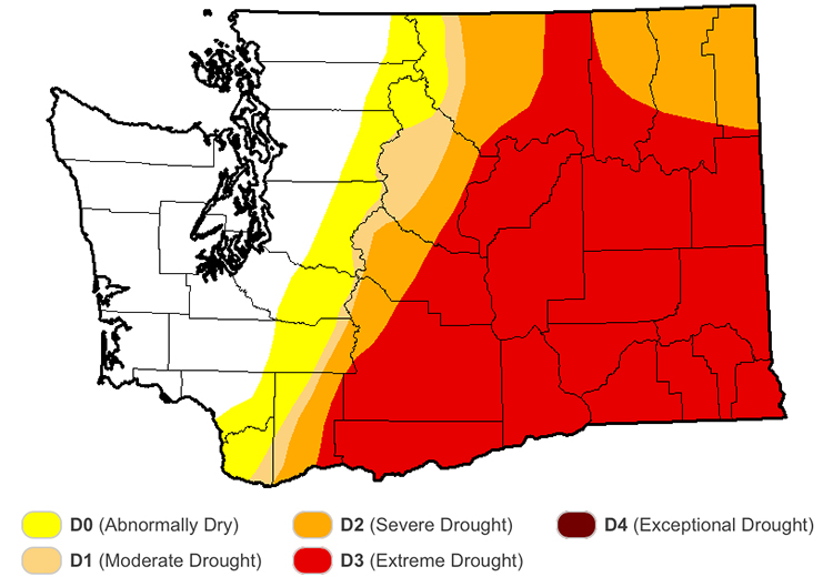 wadrought washington drought water shortage