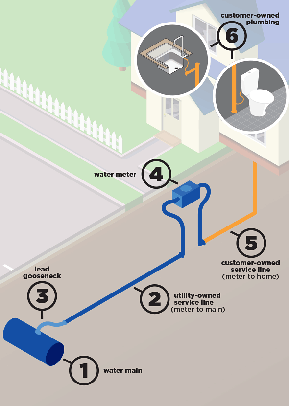 Tacoma water system gooseneck graphic