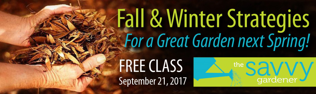Savvy Gardener Class Featured 9-21-17